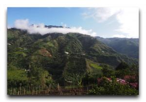 Ecuador/エクアドル