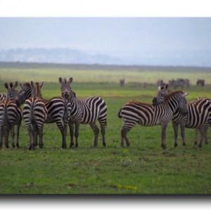 キリマンジャロ登山&タンザニアサファリ情報【2014年11月時点】