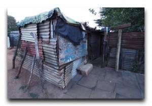 South Africa / 南アフリカ