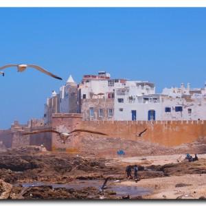 モロッコで一番のお気に入り!カモメの街にやってきた!