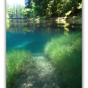 湖の底に公園?!人気急上昇中の水中絶景!!