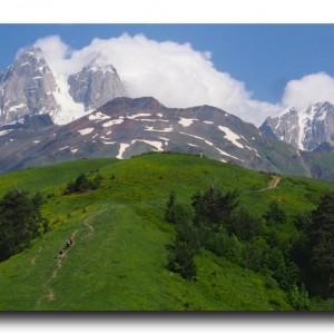 大絶景トレッキングとインフォメーションセンターの罠