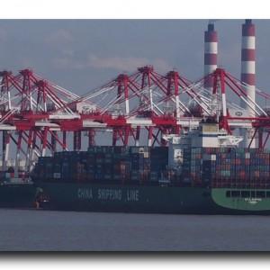 世界一の上海港のデカさに度肝を抜かれた日。